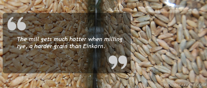 Grain types