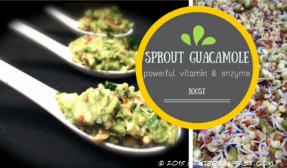 Sprout guacamole